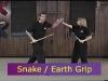long_short_snake